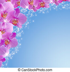 Orchid and stars - Card with orchid and stars