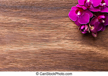 Pink orchid flowers on a wood background. Pink orchid background.