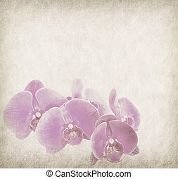 orchid design in grunge and retro style