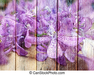 Orchid Flower on Wood texture