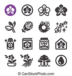 orchid flower icon set, vector and illustration