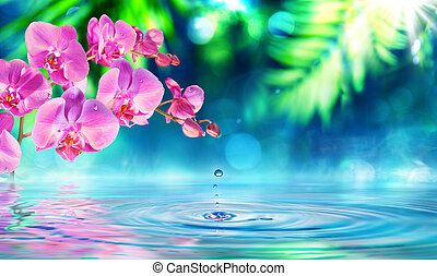 orchid in zen garden with droplet on pond