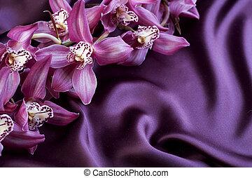 orchid., jedwab, copyspace