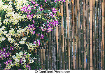 Orchid on bamboo wood.