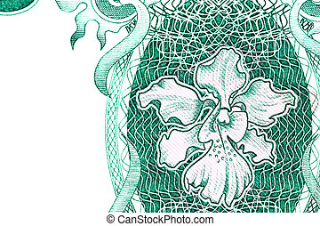 Orchid on Currency Note