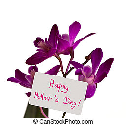 "Orchid with card "" Happy Mother's Day """
