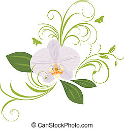 Orchid with decorative sprigs. Vector illustration