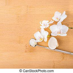 orchidee, begriff, dental, schale, zahntechnik, weißes,...