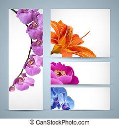 orchidee, pfingstrose, blüte, blumen, vektor, lilie