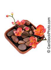 orchidee, und, kieselsteine