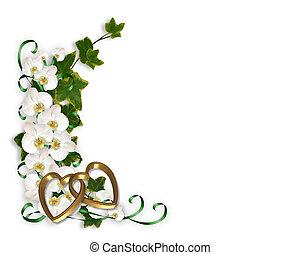 orchideen, und, efeu, umrandungen
