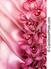 Orchids And Silk