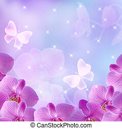 Orchids and stars