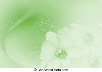 orchids in grunge retro style for background