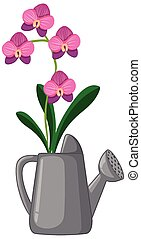 Orchids in watering can cartoon style on white background