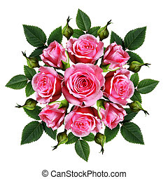 Ordered bouquet of pink rose flowers and buds