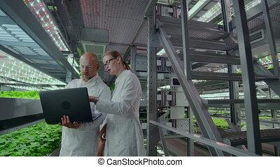 ordinateur portable, moderne, résultats, modifié, microbiologie, products., deux, scientifiques, génétiquement, recherche, discuter, laboratoire