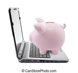 ordinateur portable, porcin, banque