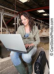 ordinateur portatif, vétérinaire, grange