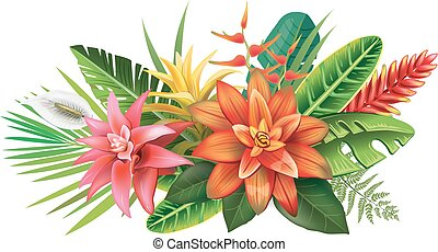 ordning, af, tropical blomster