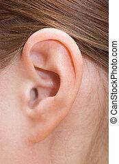 orecchio, closeup, umano