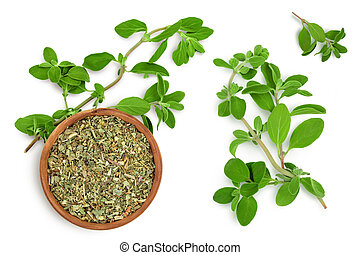 Oregano or marjoram leaves fresh and dry isolated on white background with clipping path. Top view with copy space for your text. Flat lay
