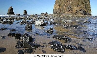 Oregon Coast - Close up of the rocks at the base of Haystack...