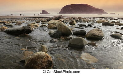 Oregon Coast - Oregon coast, Harris Beach, includes high...