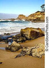 Oregon coast portrait - Incoming waves wash over the rocks...