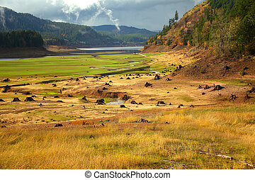 Oregon portrait - Drained reservoir reveals the stumps from...
