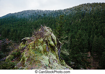 Oregon Rock Outcropping in Forest - Large rock outcropping ...