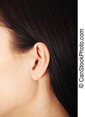 oreille humaine