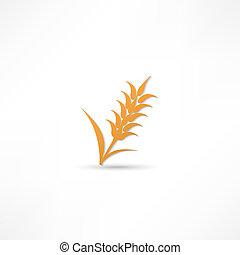 oreilles, graphique, blé, étiquettes, icônes, conditionnement, ou, bière, idéal, vecteur, orge, pain, etc., seigle, visuel