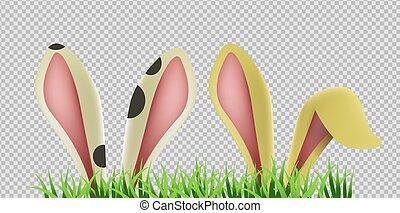oreilles, herbe, isolé, fond, lapin