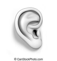 oreja, aislado, humano