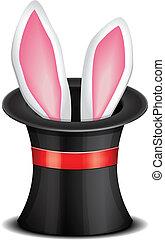 orejas de conejo, aparecer, de, el, magia, sombrero superior