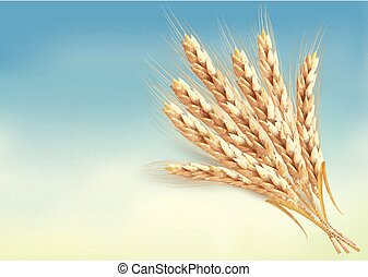 orejas, wheat.