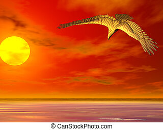 orel, východ slunce