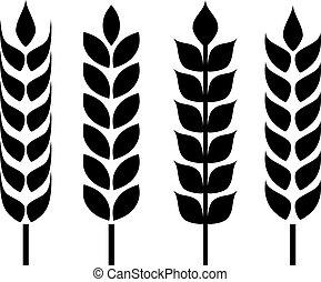 orelha, trigo, ícone