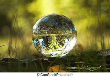 orest view through the glass ball in blur.
