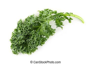 orgánico, col rizada, hojas, aislado, fondo verde, fresco, blanco, encima