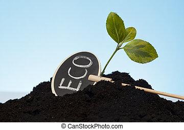 orgánico, crecer