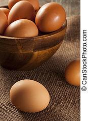 orgánico, huevos, jaula, libre, marrón