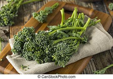 orgánico, verde, crudo, broccolini