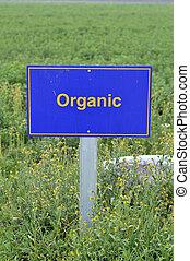 orgânica, alimento.