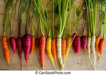 orgânica, cenouras