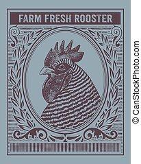 orgânica, fazenda, vindima, galo, fresco, cartão