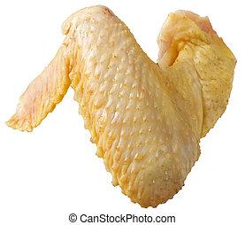 orgânica, isolado, asa, cru, fundo, galinha, branca