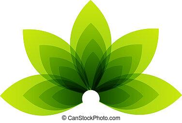 orgânica, produto