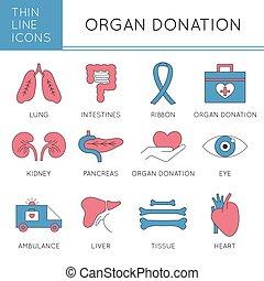 Organ Donation icon set